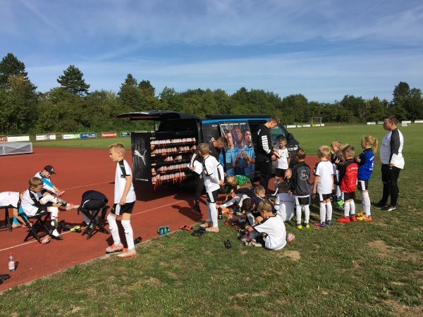 Fohlen-Camp Blaufelden 2019